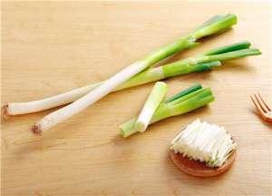 今日全国大葱价格多少钱一斤?种植方法介绍!